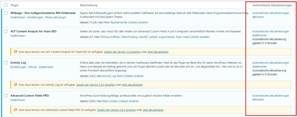 WordPress Automatisch Updates Plugins Core